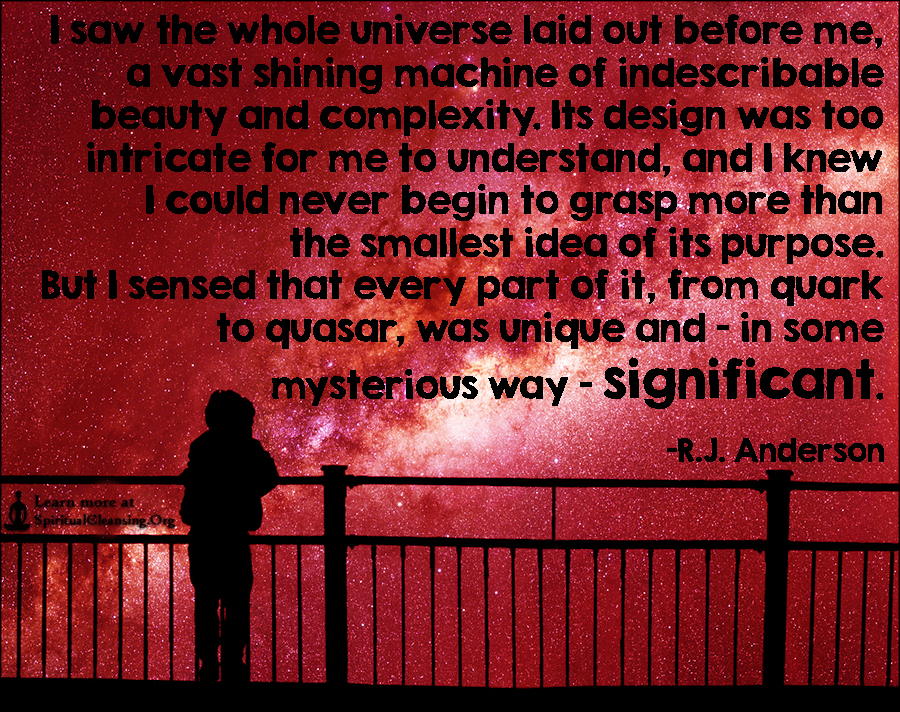 I saw the whole universe laid out before me, a vast shining machine of indescribable beauty and complexity.