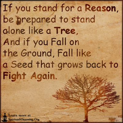 If you stand for a Reason, be prepared to stand alone like a Tree, And if you Fall on the Ground, Fall like a Seed that grows back to Fight Again.