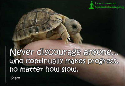 Never discourage anyone...who continually makes progress, no matter how slow.