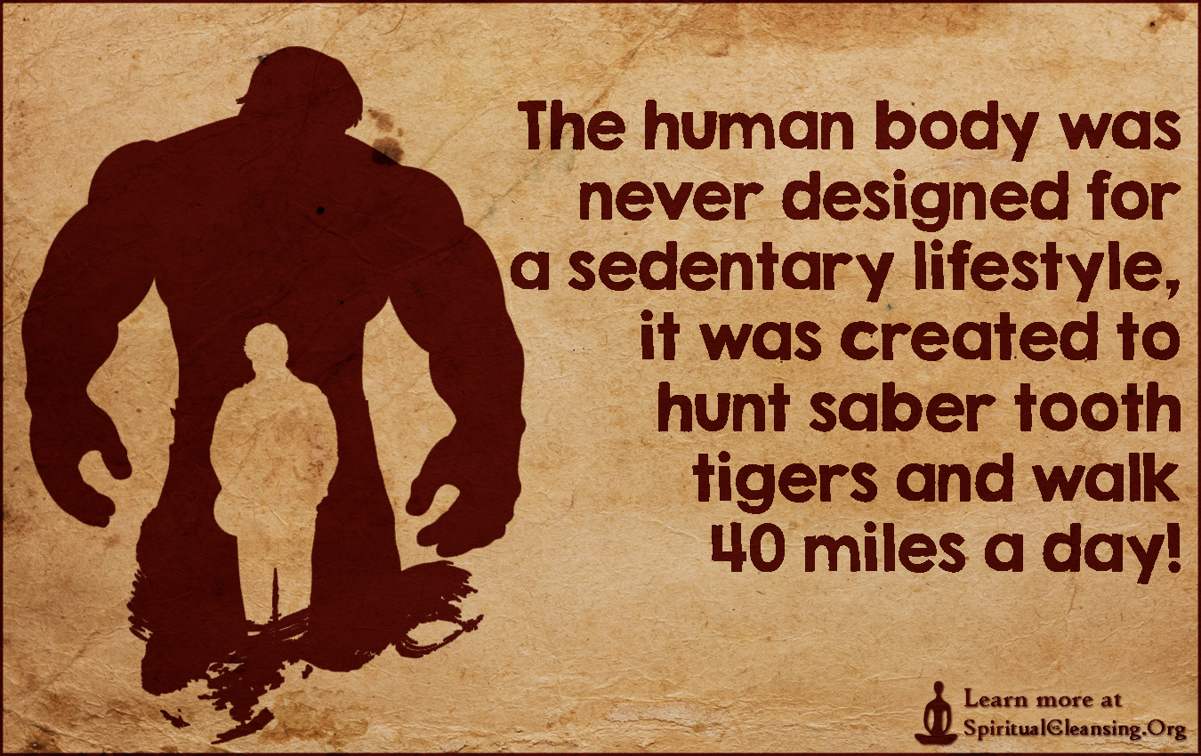 The human body was never designed for a sedentary lifestyle, it was created to hunt saber tooth tigers and walk 40 miles a day!
