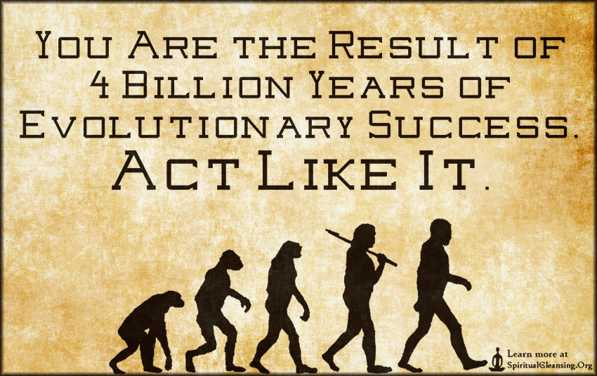 You Are the Result of 4 Billion Years of Evolutionary Success. Act Like It.