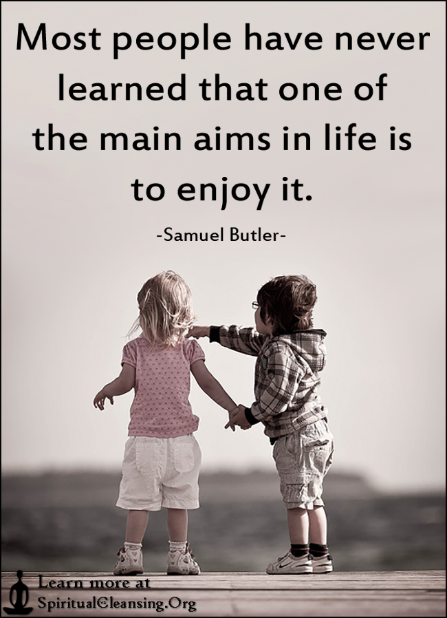 Most people have never learned that one of the main aims in life is to enjoy it.