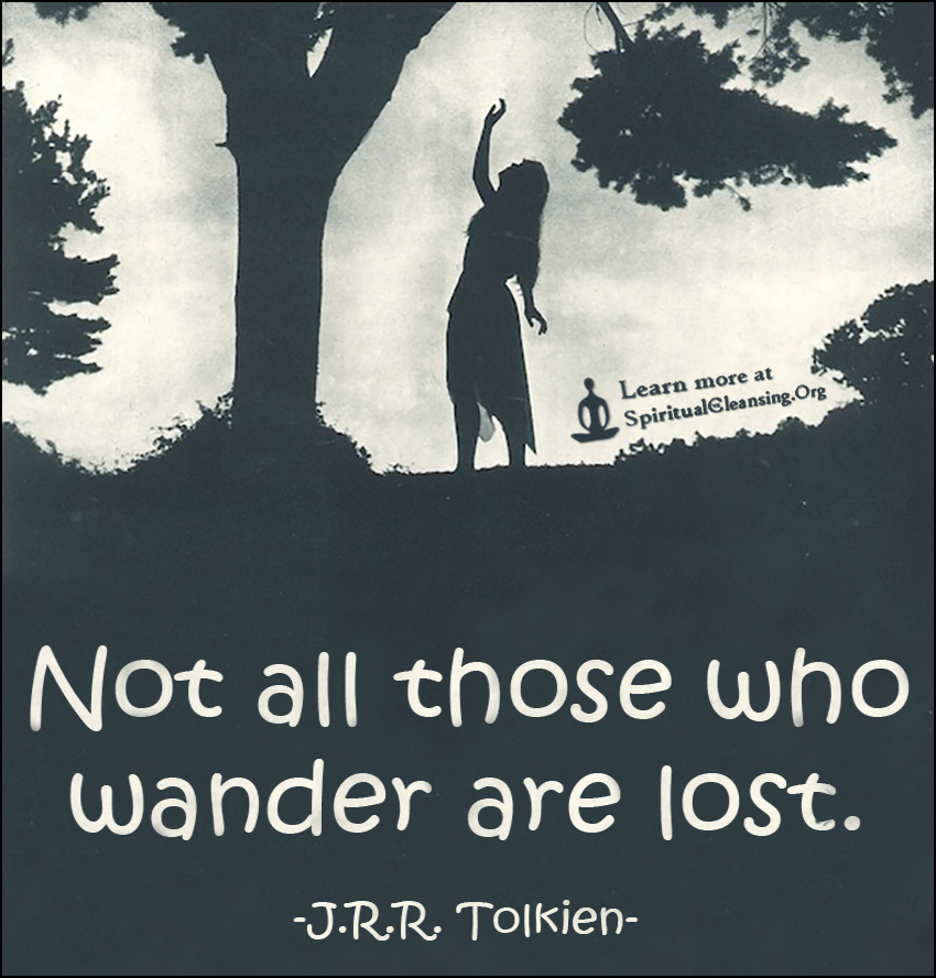 not all those who wander are lost author