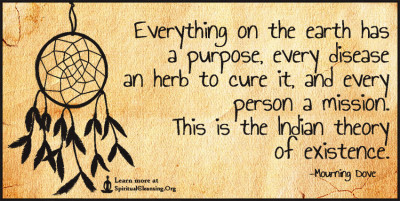 Everything on the earth has a purpose, every disease an herb to cure it, and every person a mission. This is the Indian theory of existence.