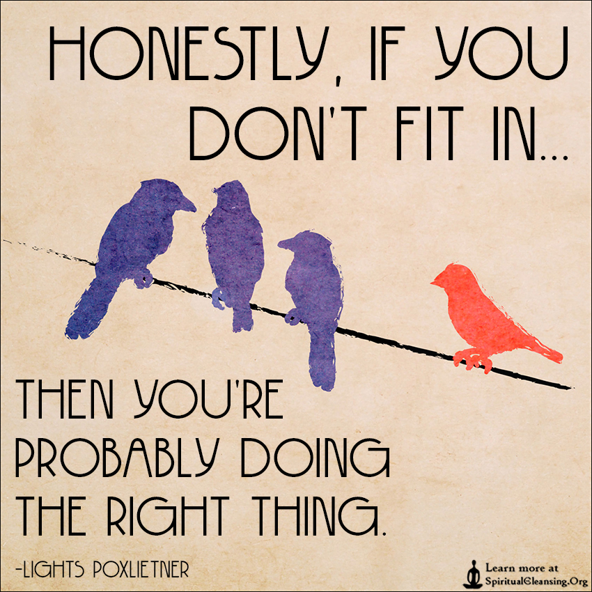 I Don T Fit In Anywhere Quotes: Honestly, If You Don't Fit In Then You're Probably Doing
