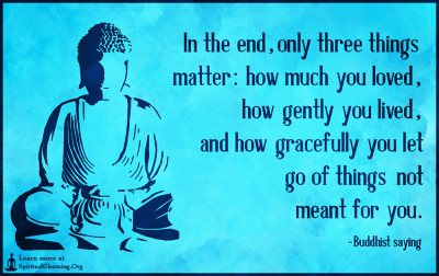 In the end, only three things matter - how much you loved, how gently you lived, and how gracefully you let go of things not meant for you.
