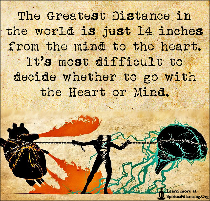 The Greatest Distance in the world is just 14 inches from the mind to the heart.. It's most difficult to decide whether to go with the Heart or Mind.