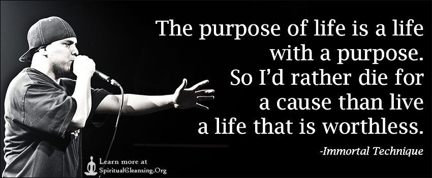 The purpose of life is a life with a purpose. So I'd rather die for a cause than live a life that is worthless.