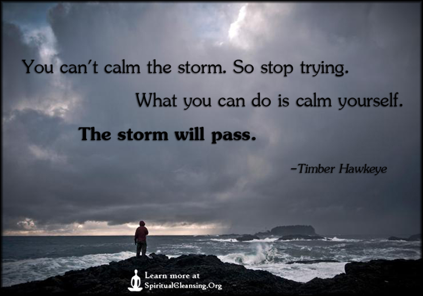 You can't calm the storm. So stop trying. What you can do is calm yourself. The storm will pass.