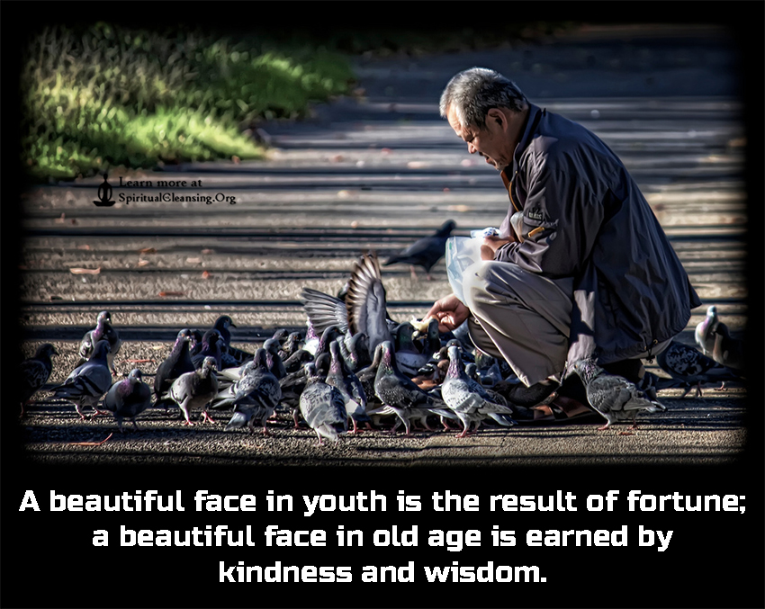 A beautiful face in youth is the result of fortune; a beautiful face in old age is earned by kindness and wisdom.