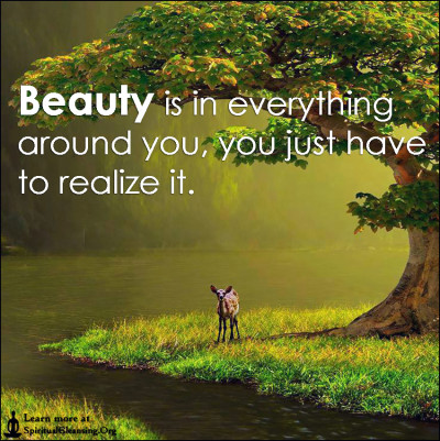 Beauty is in everything around you, you just have to realize it.