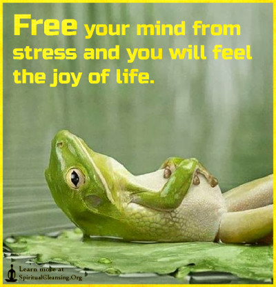 Free your mind from stress and you will feel the joy of life.