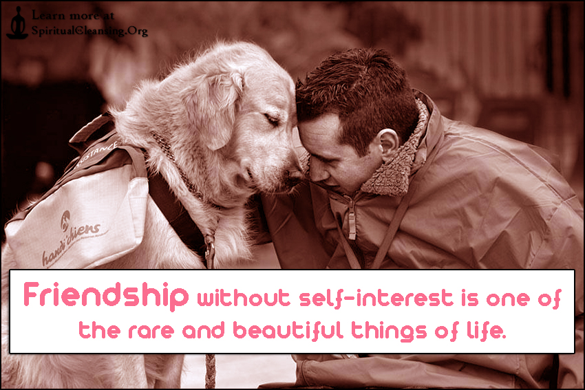 Friendship without self-interest is one of the rare and beautiful things of life.