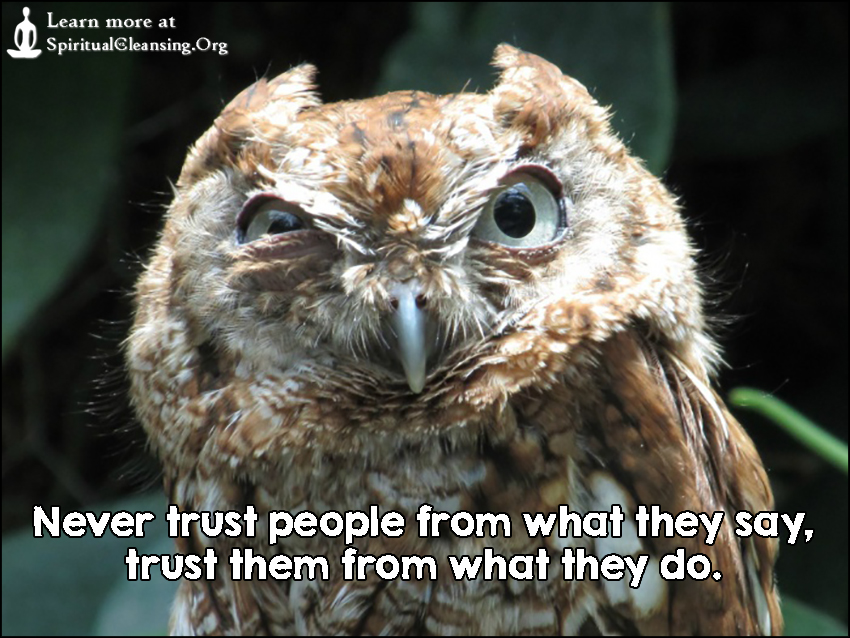 Never trust people from what they say, trust them from what they do.