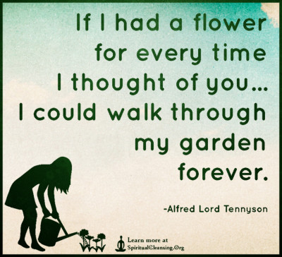 If I had a flower for every time I thought of you...I could walk through my garden forever.