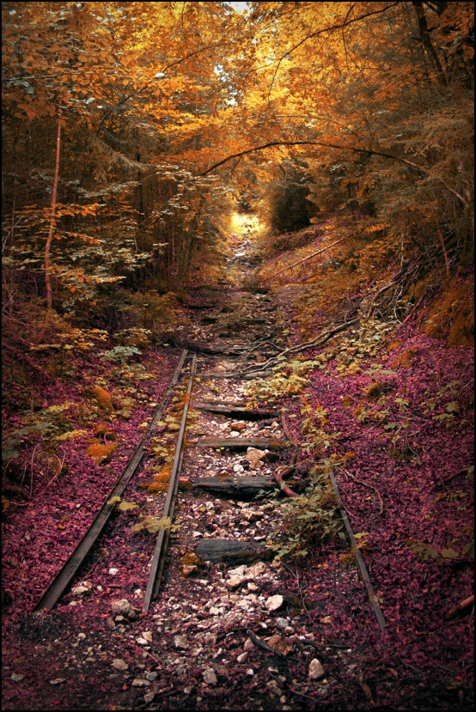 Abandoned Railroad - Lebanon, Missouri