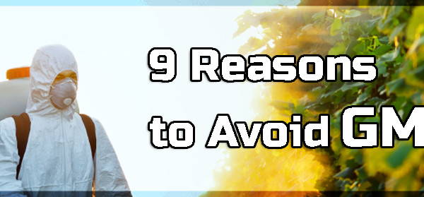 9 Reasons to Avoid GMOs