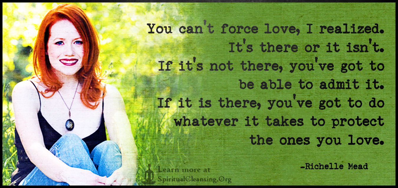 You can't force love, I realized. It's there or it isn't. If it's not there, you've got to be able to admit it. If it is there, you've got to do whatever it takes to protect the ones you love.