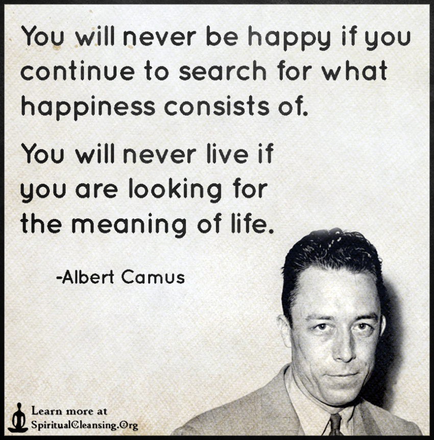 You Will Never Be Happy If You Continue To Search For What Happiness