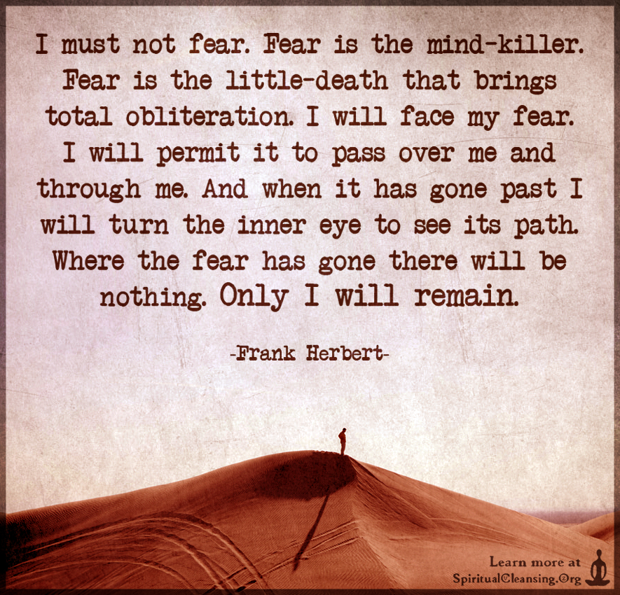 I must not fear. Fear is the mind-killer. Fear is the little-death that brings total obliteration.