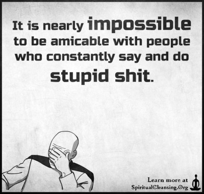 It is nearly impossible to be amicable with people who constantly say and do stupid shit.