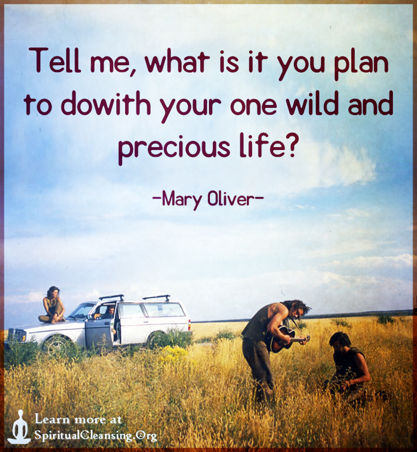Tell me, what is it you plan to dowith your one wild and precious life