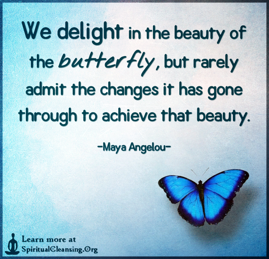 We delight in the beauty of the butterfly, but rarely admit