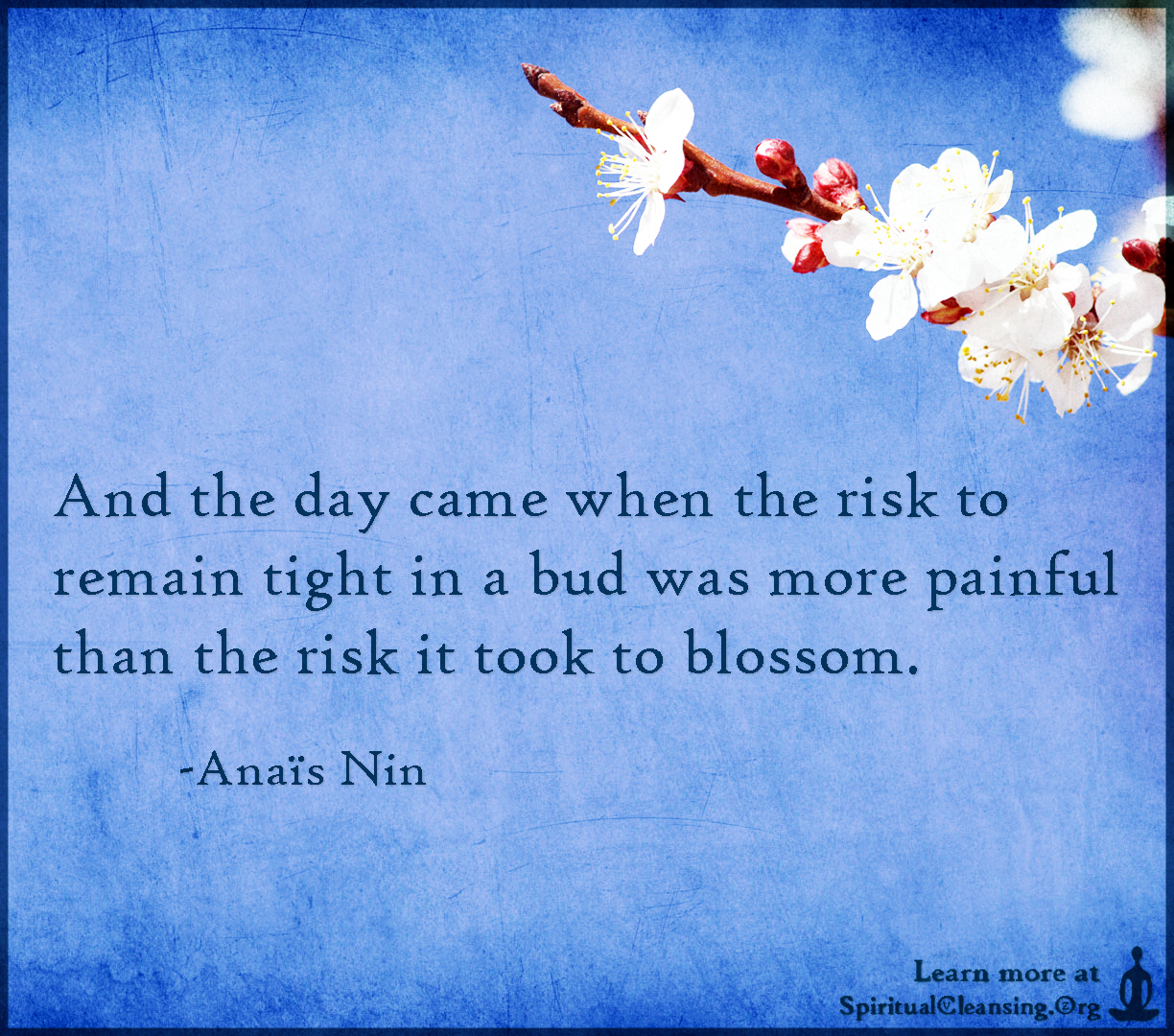 And the day came when the risk to remain tight in a bud was more