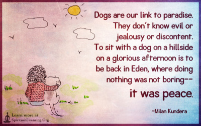 Dogs are our link to paradise. They don't know evil or jealousy or discontent.