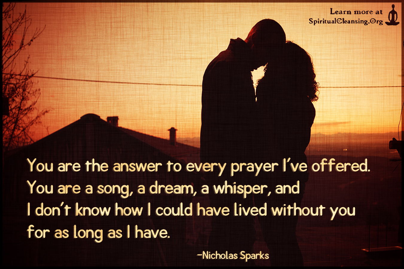 You are the answer to every prayer I've offered. You are a song, a dream
