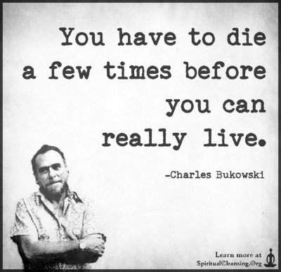 You have to die a few times before you can reallylive.