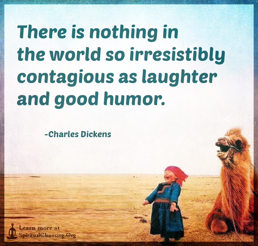There is nothing in the world so irresistibly contagious as laughter and good humor.