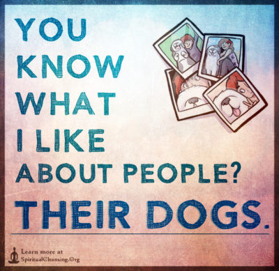 You know what I like about people Their Dogs.